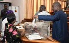 Assemblée Nationale : Les 09 députés nouveaux membres du Cos-Lépi connus