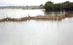 Après plusieurs mois de travail inclusif : Les opérations d'assainissement des plans d'eau du Sud Benin  entrent dans la phase active